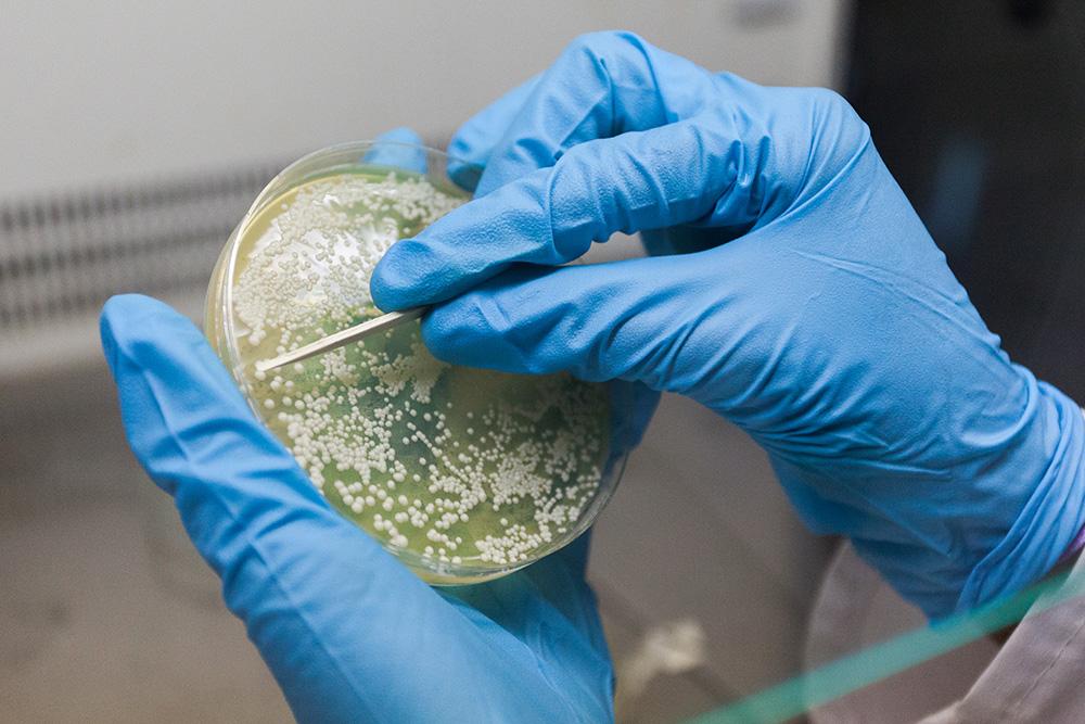 Certificación de laboratorios y acreditación de ensayos